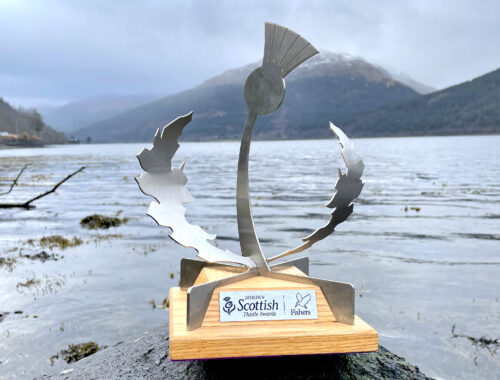 Visit Scotland Thistle Award